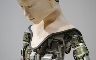 Robo Advisors: Are They The Smart Choice?
